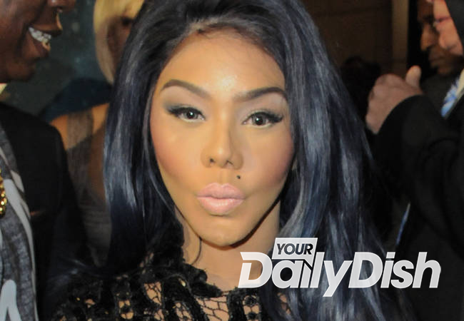 Lil Kim working out custody with ex-boyfriend