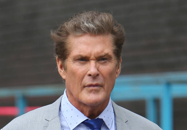 David Hasselhoff pulls out of Comic-Con appearance