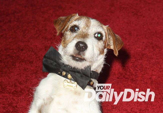 Uggie the dog dies