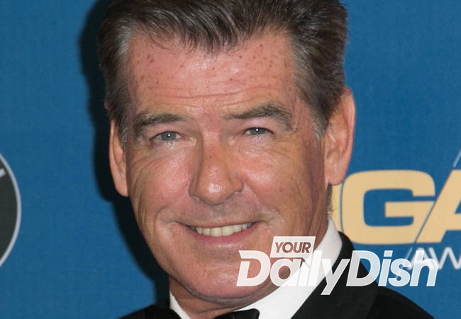 Pierce Brosnan stopped by airport officials for carrying knife