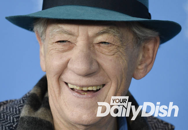 Ian McKellen wants to take gay rights fight global