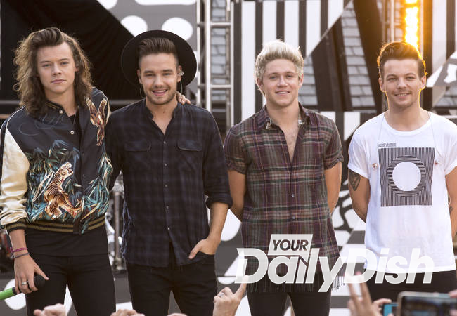 One Direction to go on extended hiatus in 2016 - report