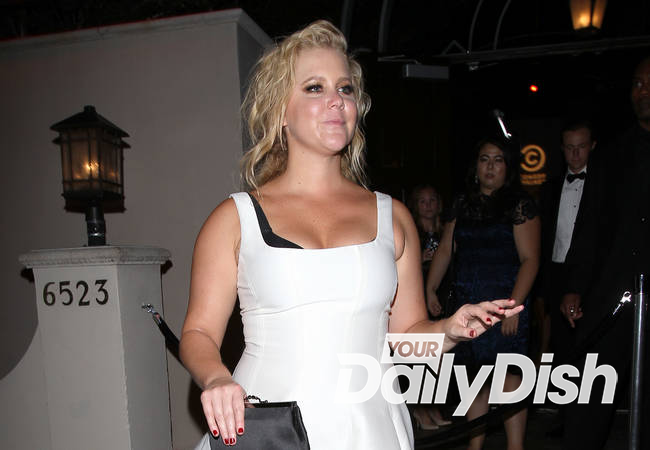 Amy Schumer kicks heckler out of gig