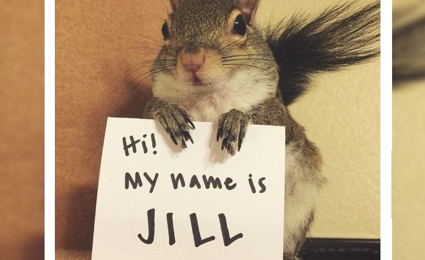 Credit: Instagram/@this_girl_is_a_squirrel