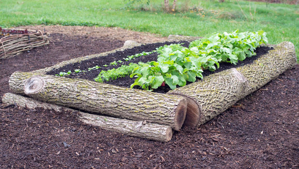 raised flower beds that are better than traditional gardens