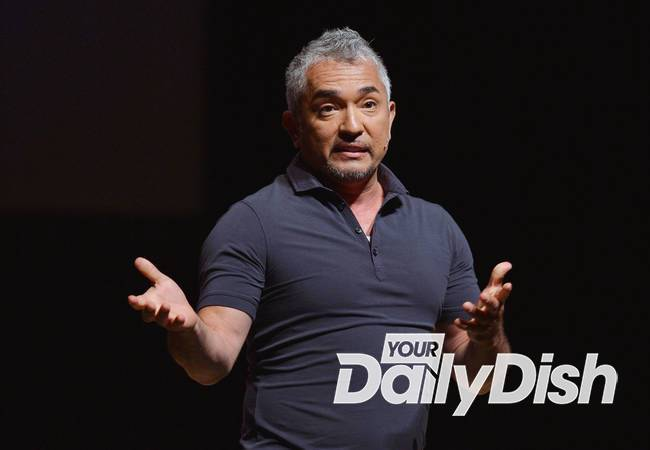 Cesar Millan announces engagement