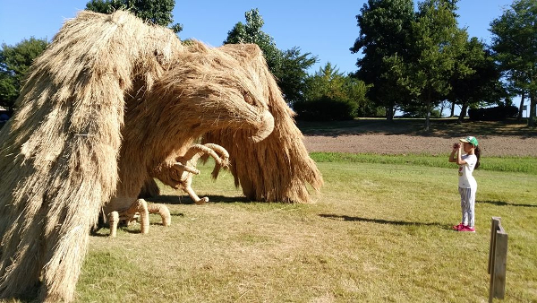 Annual Straw Art Festival in Japan Has to Be Seen to Be Believed - Outchemy