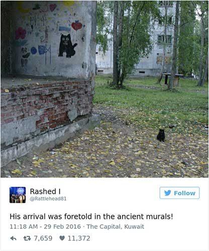 cattweets_murals