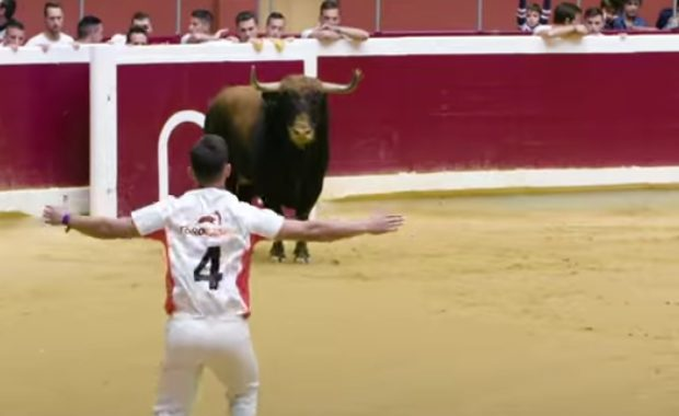 bull leaper