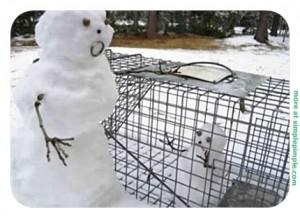 FB-Funny-Snowman-simplepimple.com-7