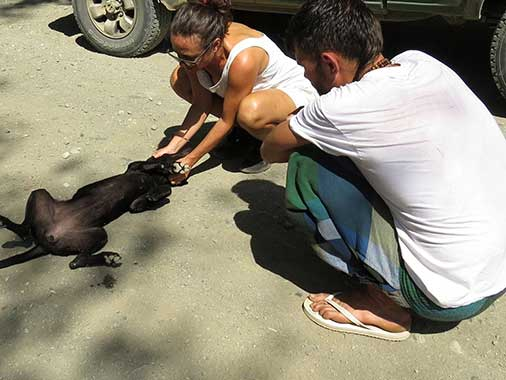 Source: Charlie's Angels - Animal Rescue - Costa Rica