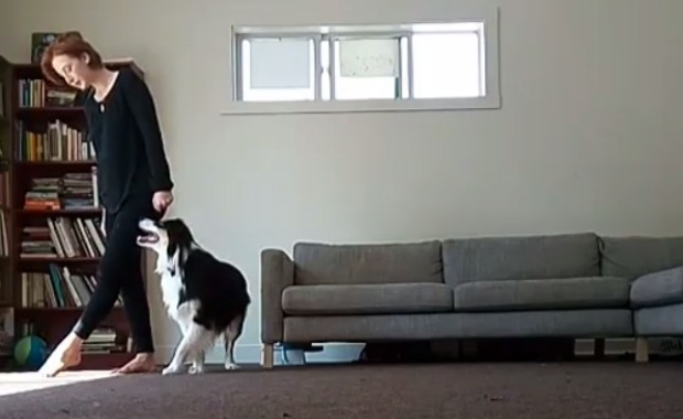 Mary And Her Best Friend Secret The Dog