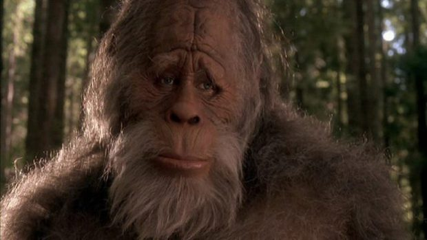 Source: Harry and the Hendersons (1987)