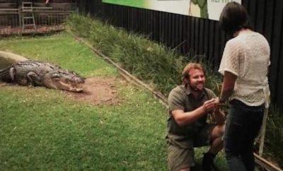 Source: Australian Reptile Park Facebook