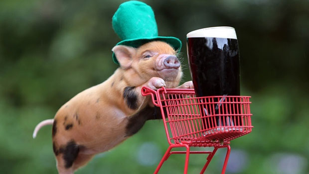 St. Patrick's Day spending