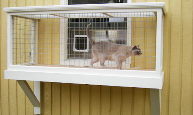 Catio Spaces Are The Latest Pet Trend Taking The Internet