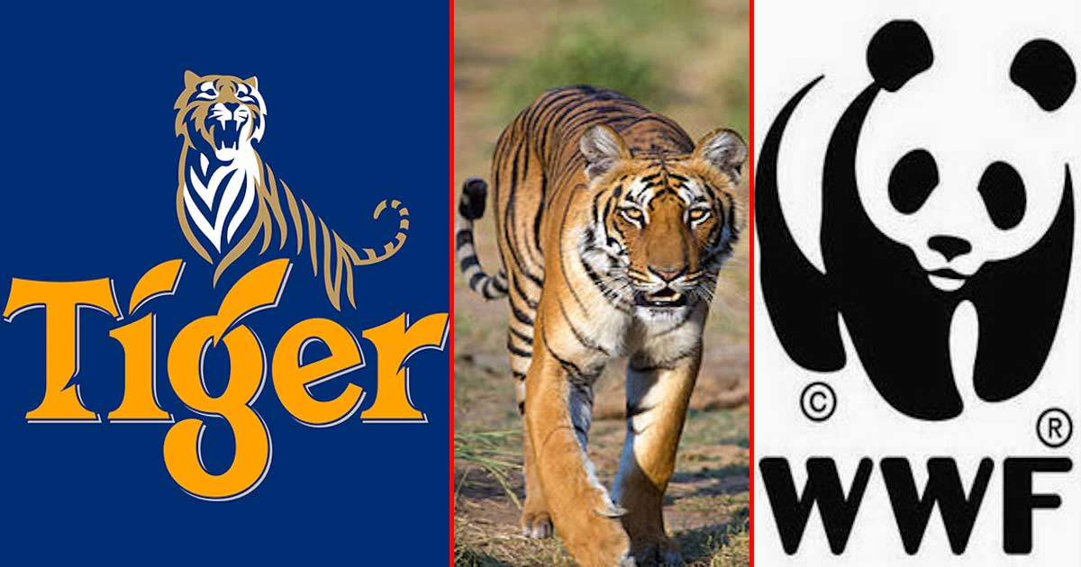 Tiger Beer and the WWF are Teaming Up to Save Tigers